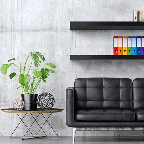 Poster with black sofa and green plant composition, 3d illustration